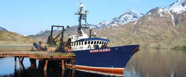 F/T Ocean Alaska - United States Seafoods, L.L.C.